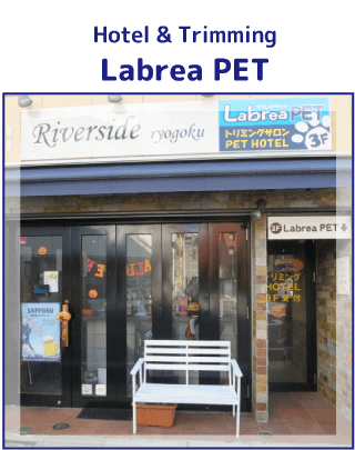 Hotel&trimming Labrea PET